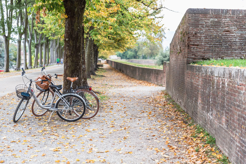 Biking on the Lucca Ramparts. Photo by Kari | Beautiful Ingredient.