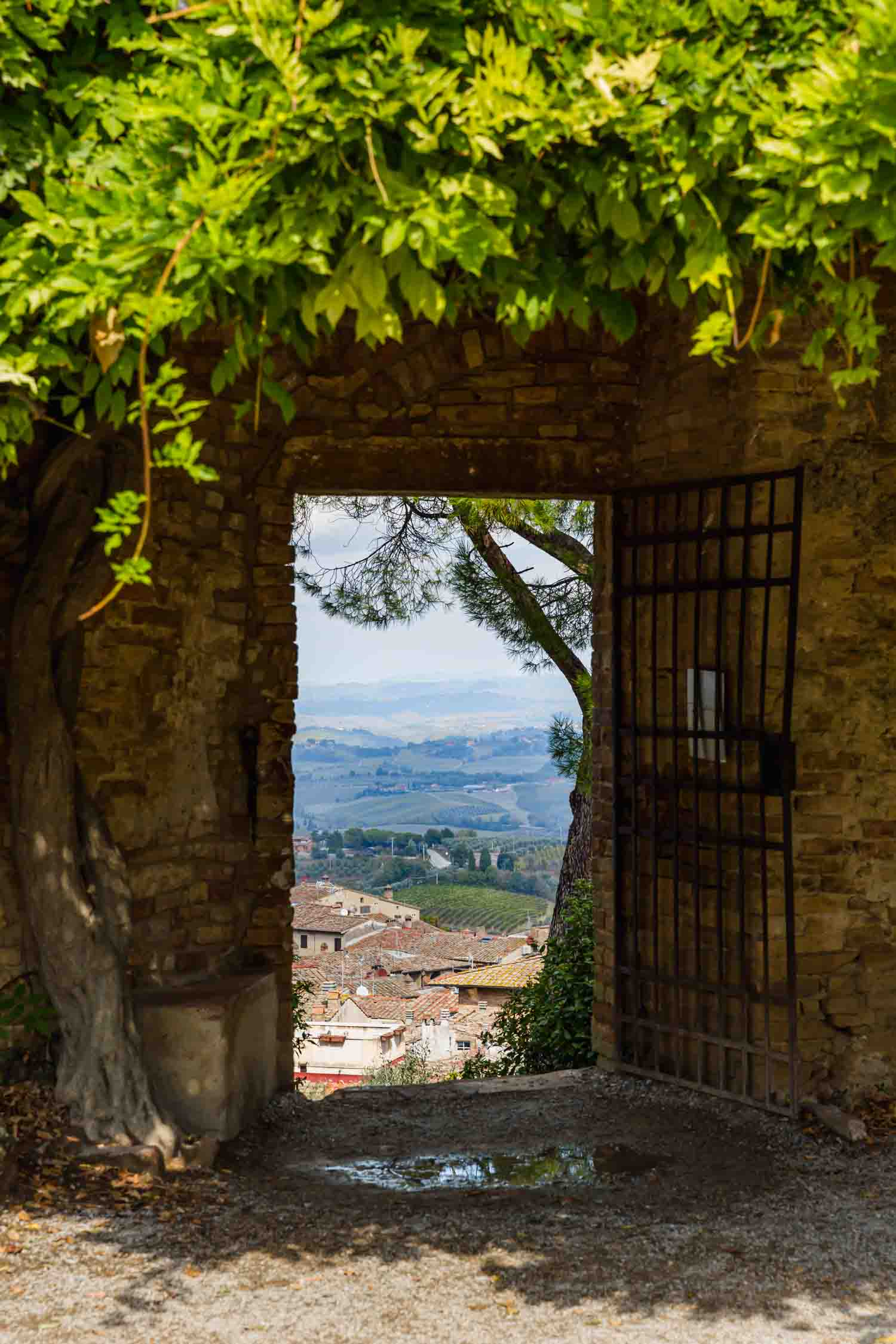 Incredible views in San Gimignano, Italy. #tuscany #travel #italy #italianfarmhouse #olivegroves #travelphotography #vineyards #italyinautumn #beautifulitaly #vegantravel #italytravel #veganitaly #vegantuscany #veganhotel #ecotourism #organichotel #veganhotel #veganretreat #veganbedandbreakfast #sangimignano
