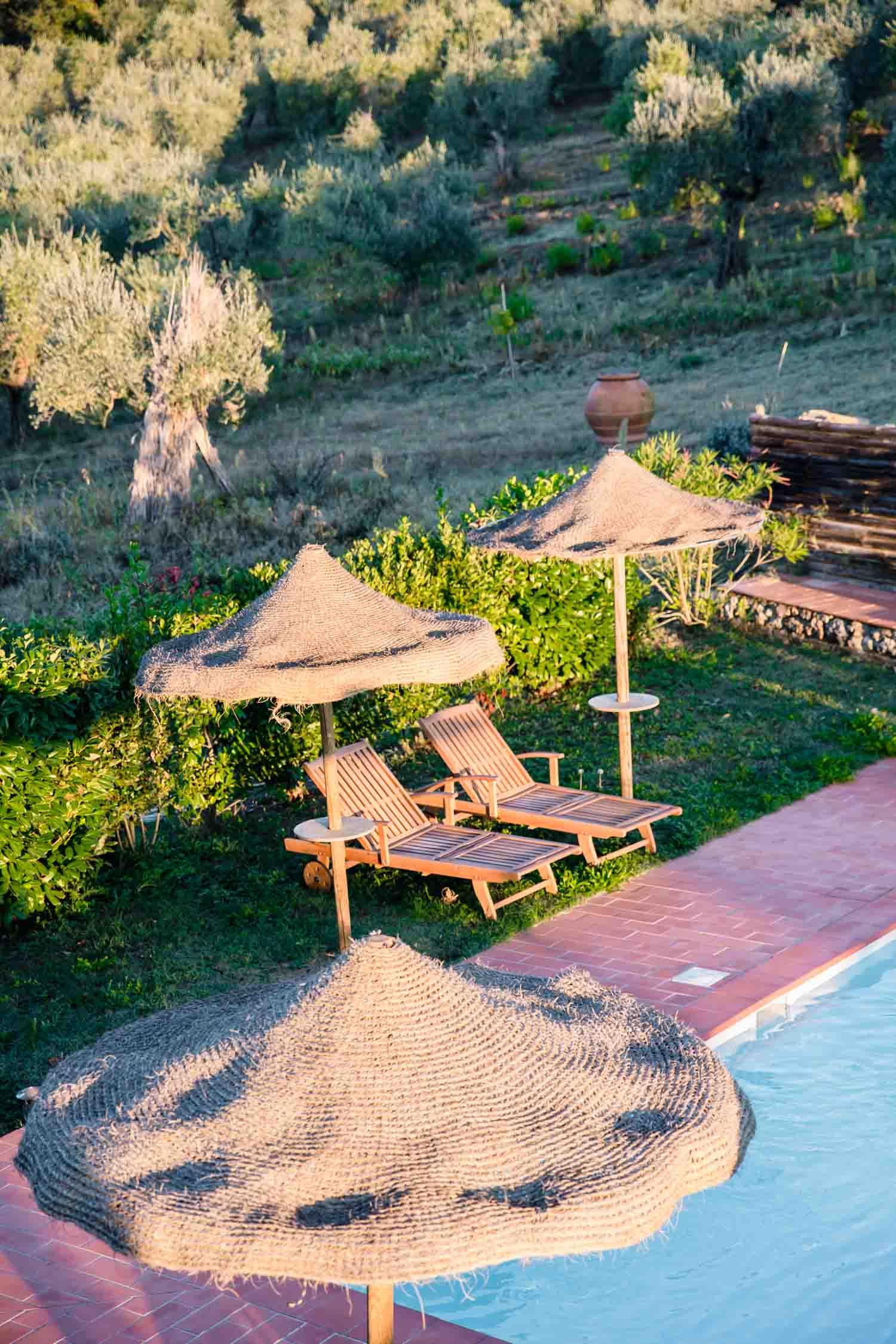 Olive grove and pool at i pini, the organic & vegan Italian farmhouse in Tuscany, Italy. #tuscany #travel #italy #italianfarmhouse #olivegroves #organicoliveoil #vineyards #italyinautumn #veganrestaurant #vegantravel #italytravel #veganitaly #vegantuscany #veganhotel #ecotourism #organichotel #veganhotel #veganretreat #veganbedandbreakfast #sangimignano