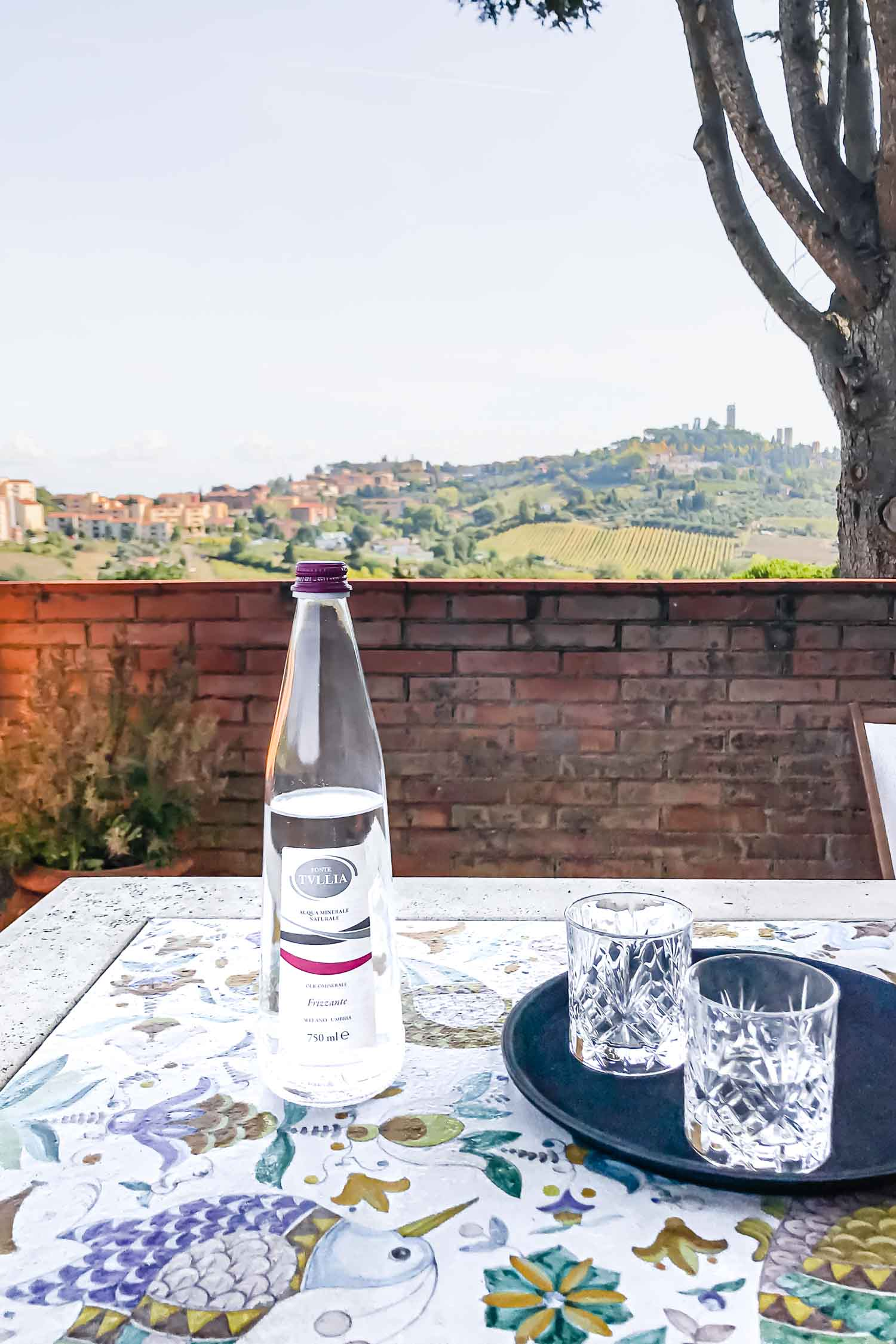 On the Loggia terrace at agrivilla i pini, overlooking the San Gimignano towers. i pini is a 100% organic vegan farm and restaurant retreat. #tuscany #travel #italy #italianfarmhouse #olivegroves #organicoliveoil #vineyards #italyinautumn #veganrestaurant #vegantravel #italytravel #veganitaly #vegantuscany #veganhotel #ecotourism #organichotel #veganhotel #veganretreat #veganbedandbreakfast #sangimignano