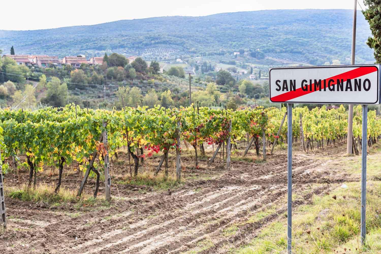 The countryside around San Gimignano, Tuscany, Italy. #tuscany #travel #italy #italianfarmhouse #olivegroves #oliveoil #vineyards #italyinautumn #veganrestaurant #vegantravel #italytravel #veganitaly #vegantuscany #veganhotel #ecotourism #organichotel #veganhotel #veganretreat #veganbedandbreakfast #sangimignano
