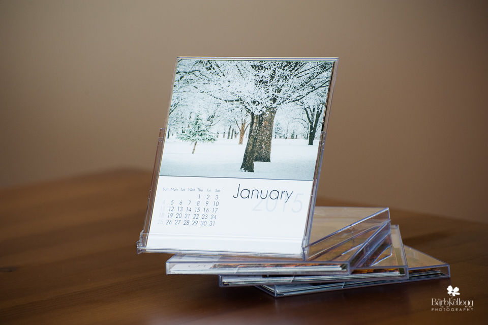 Example of 2015 Nature's Beauty TREES Calendar