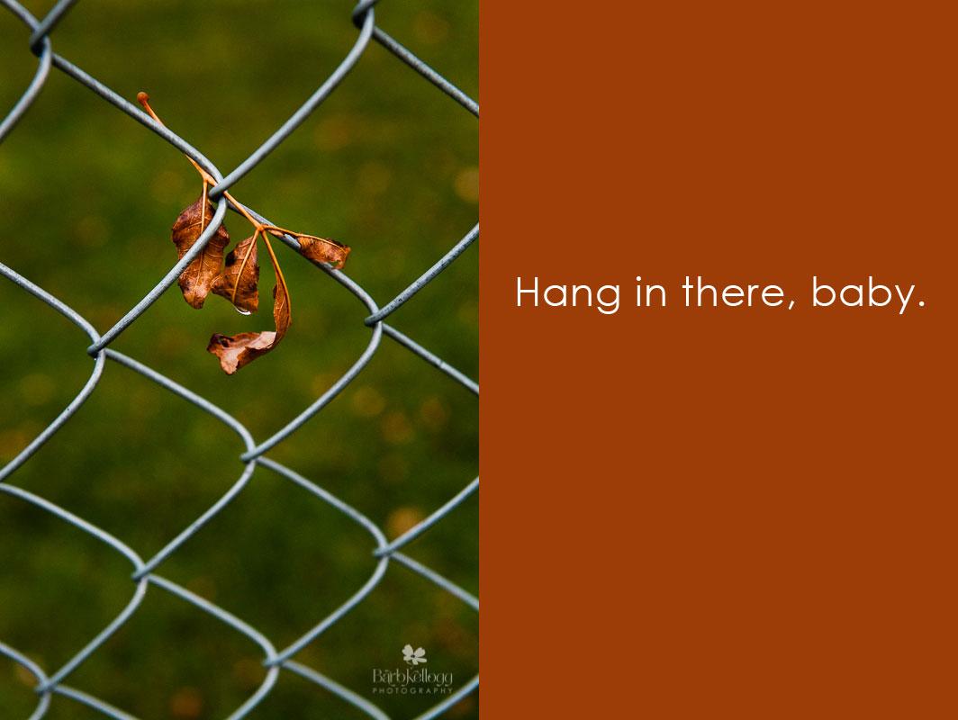 Hang on, Baby!