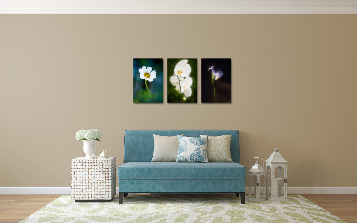 Shown from left to right — White Cosmos, Summer Orchid, and Iris in a Vase