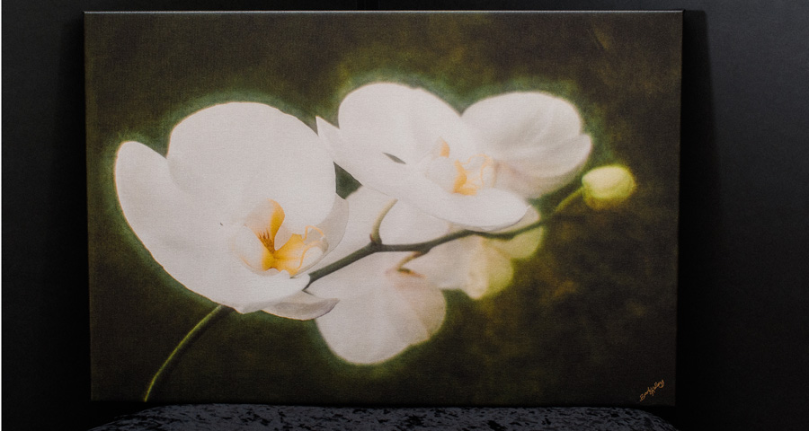Summer Orchid (shown here), and Dreamy Roses and Summer Orchid shown in slide show on premium gallery wrapped canvas.