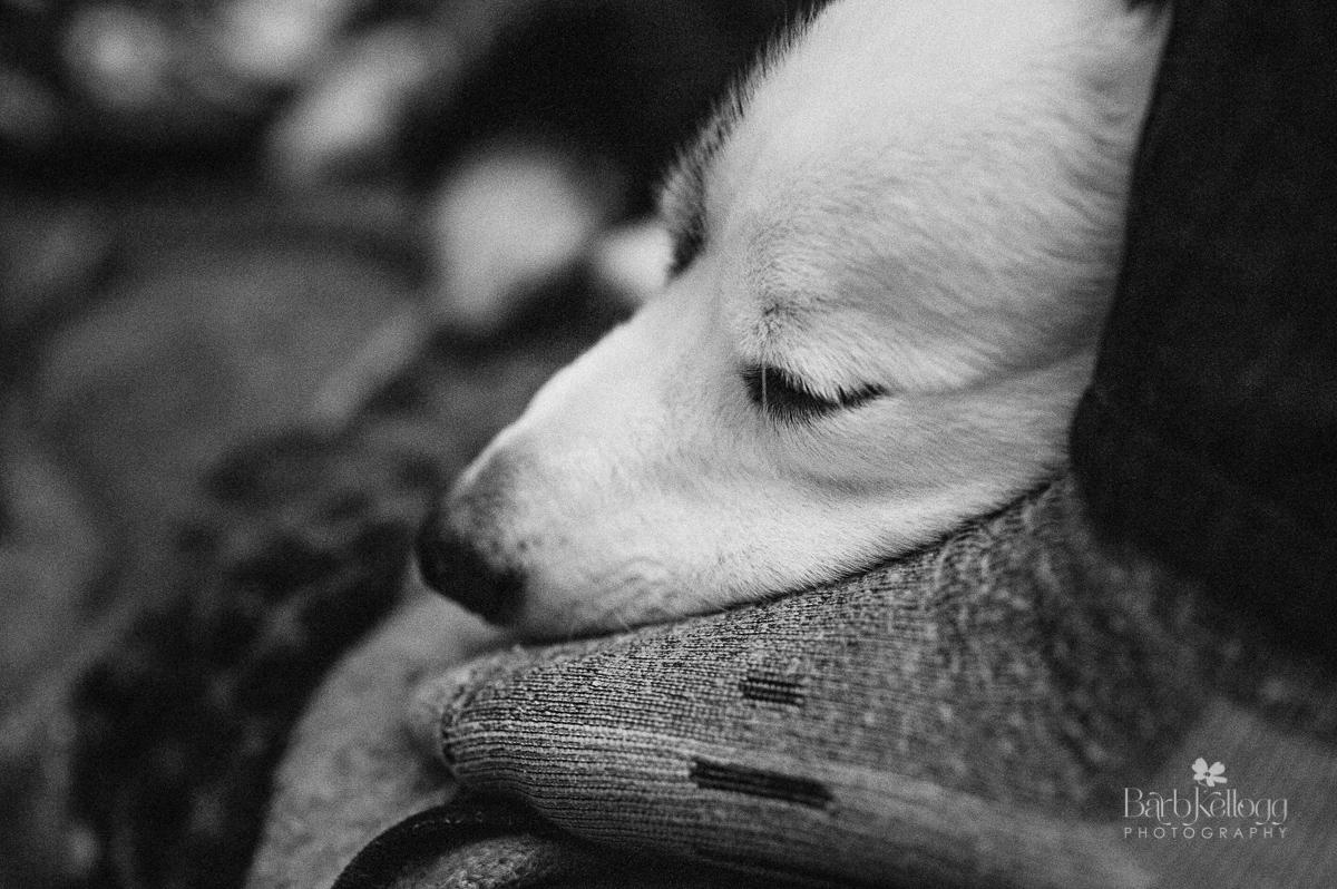 mulder-sleeping-foot-barbKellogg.jpg