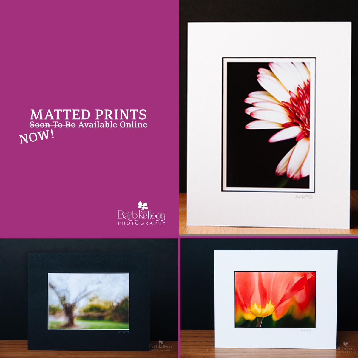 Matted_Prints_Promo_1200px.jpg