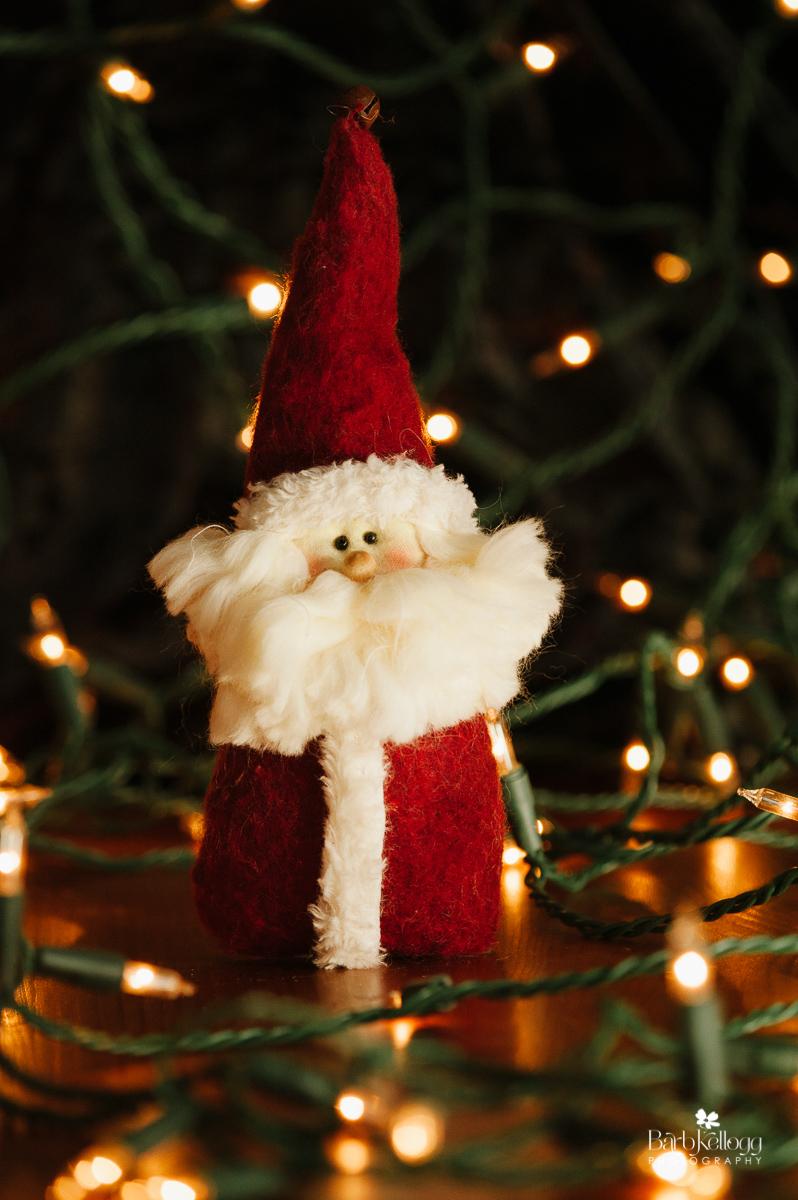 santa-ornament-barb-kellogg.jpg