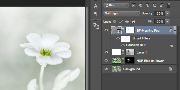 Screen shot of layers in Photoshop.