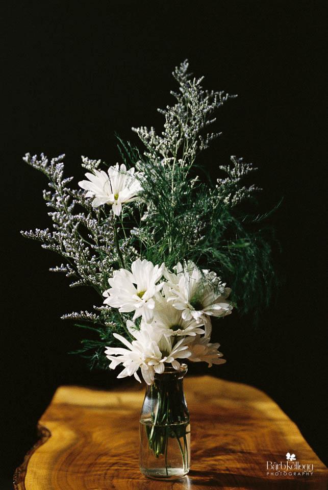 daisy, Portra400 at ISO 800, window light