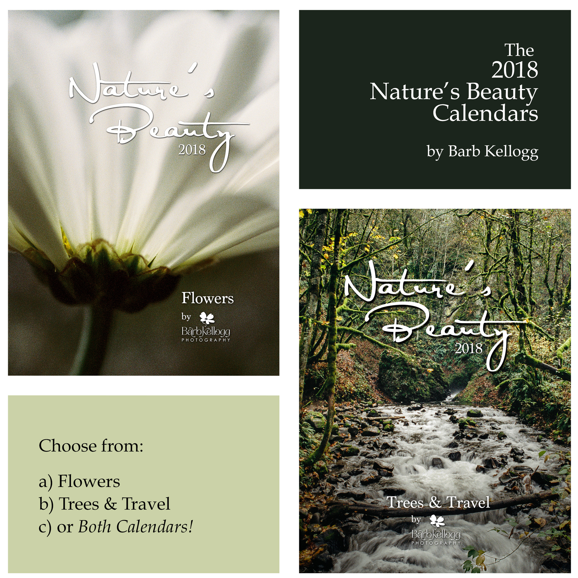 Two versions of the 2018 Nature's Beauty jewel case calendars.