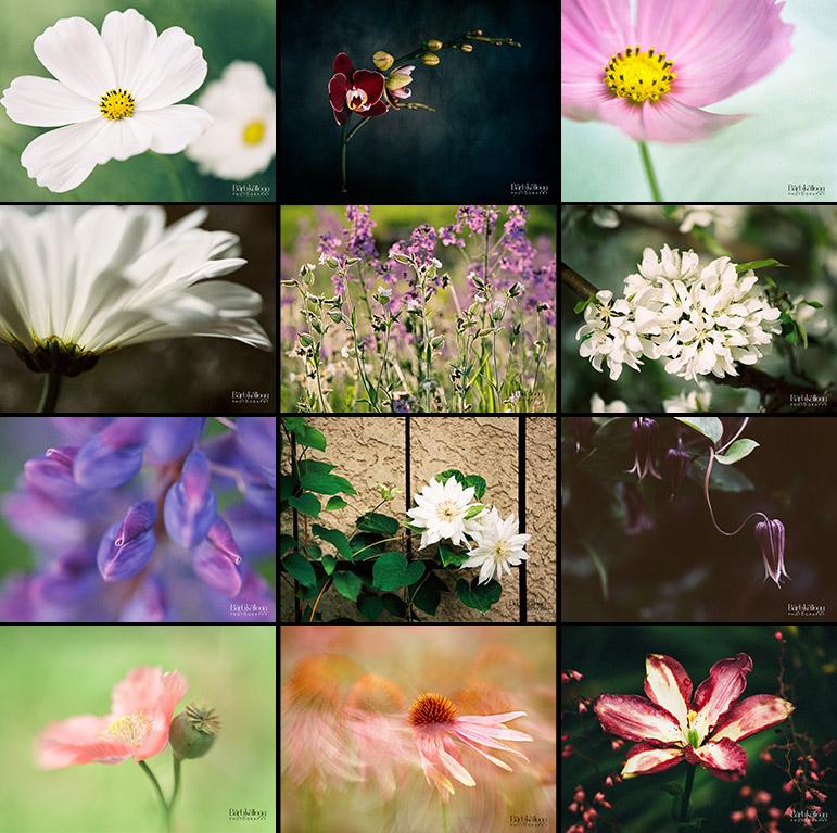 2018_FLOWERS_Trvl_cube.jpg