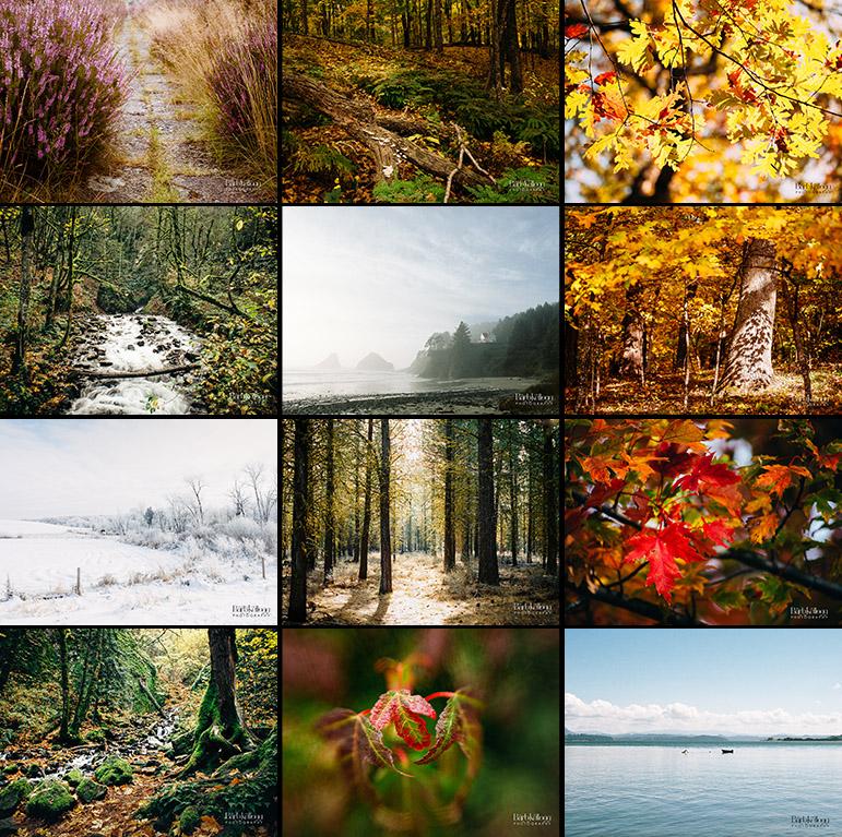 2018_Trees_Trvl_cube.jpg