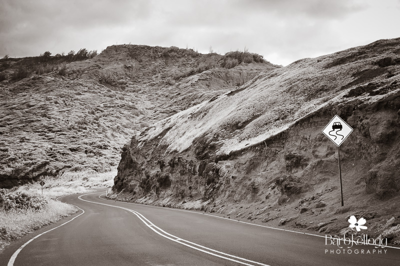 dsc_5738_hawaii_cpyrt2013barbkellogg_roads.jpg