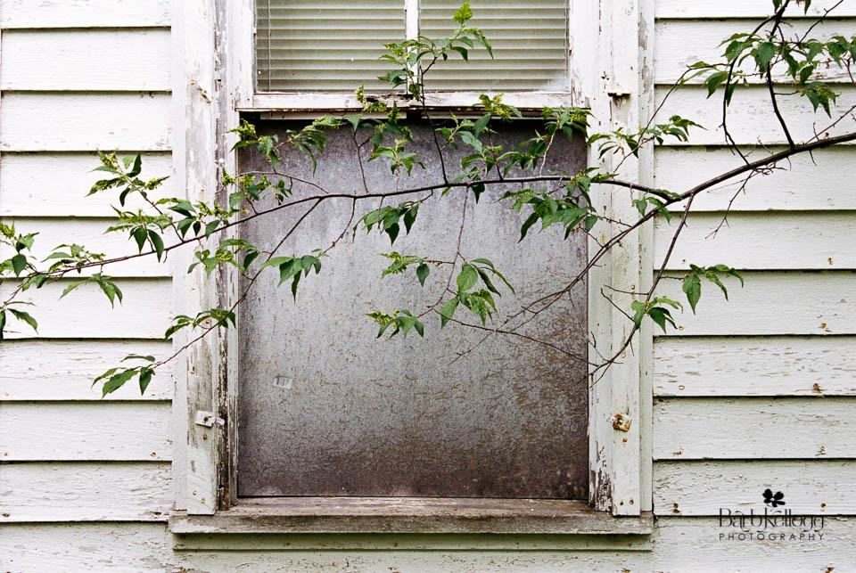 """Blocked Window"", © 2017 Barb Kellogg"