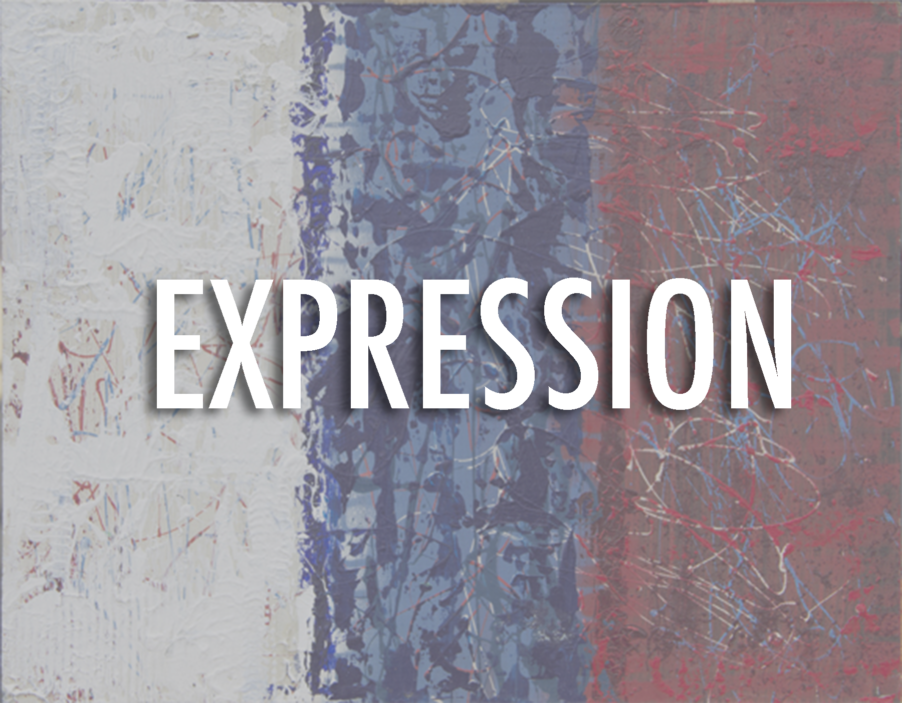 EXPRESSION SERIES    WHERE DEFINITIONS AND WORDS STOP, THIS SERIES BEGINS. THERE IS NO SUBJECT INVOLVING EXPRESSIONS AND EMOTION THAT CAN'T MAKE THIS EVER GROWING SERIES. THE STYLES COVERED HERE CREATIVELY DISPLAY THE LIMITLESS WAYS THAT WE CAN EXPRESS OURSELVES.