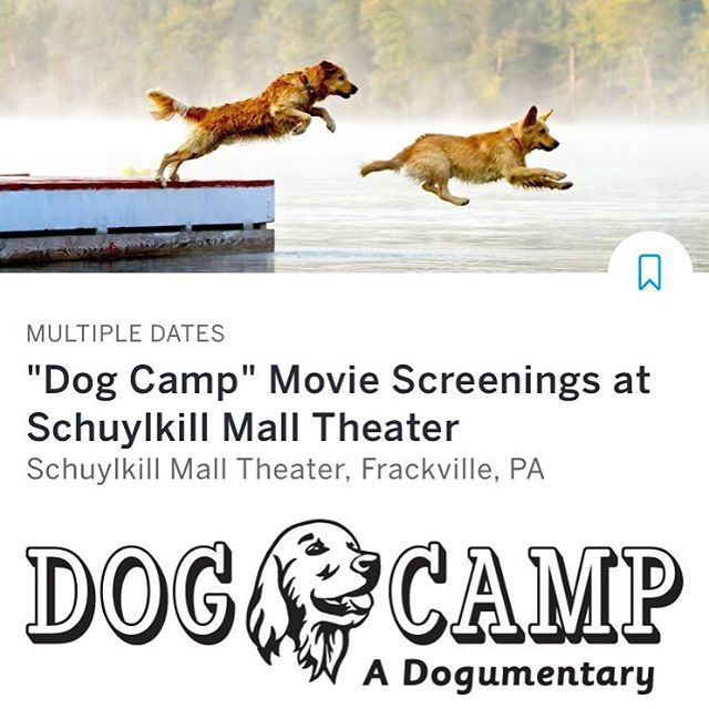 "We're excited to announce the first screenings of DOG CAMP as part of the Schuylkill Mall ""Goes to the Dogs"" fundraising event on May 15th! Check out the link in bio for tickets and more info!! #dogumentary #film #dogs #screening #rescue #rescuedogs #fundraiser #goldenretriever #puppy #movie #dogsofinstagram"