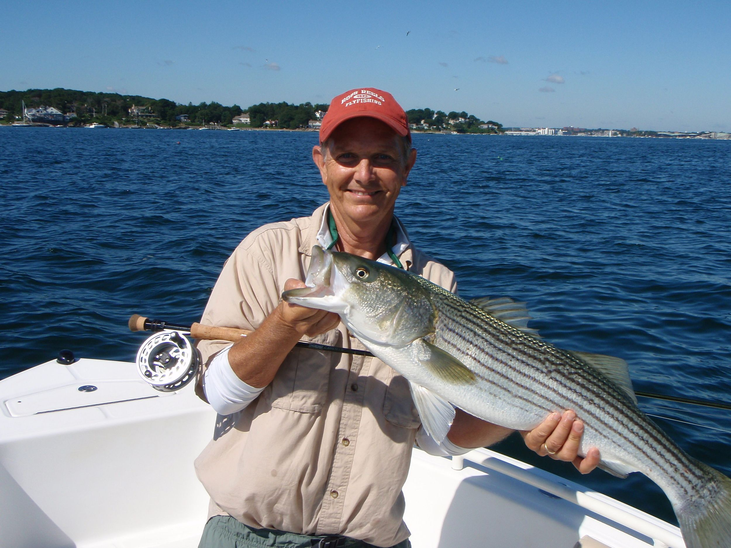 Image of a nice fly rod striped bass caught off Marblehead