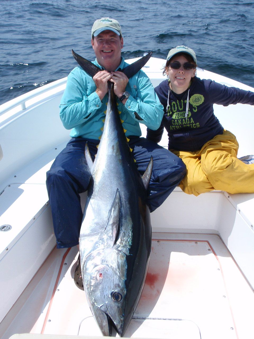 Image of a large bluefin tuna caught on spinning gear off Stellwagen bank