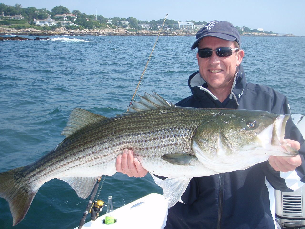 Image of a large striped bass caught off Marblehead