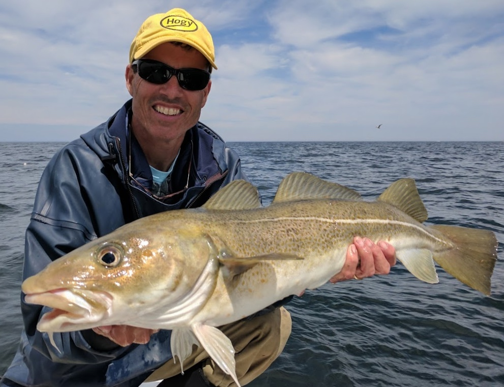 Image of Captain Randy Sigler with a large Cod caught on Stellwagen Bank