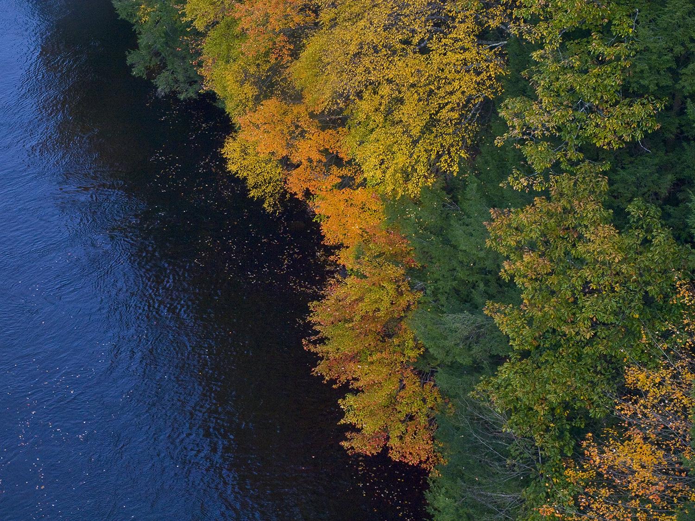 Autumn-River-1500px-PA200173.jpg