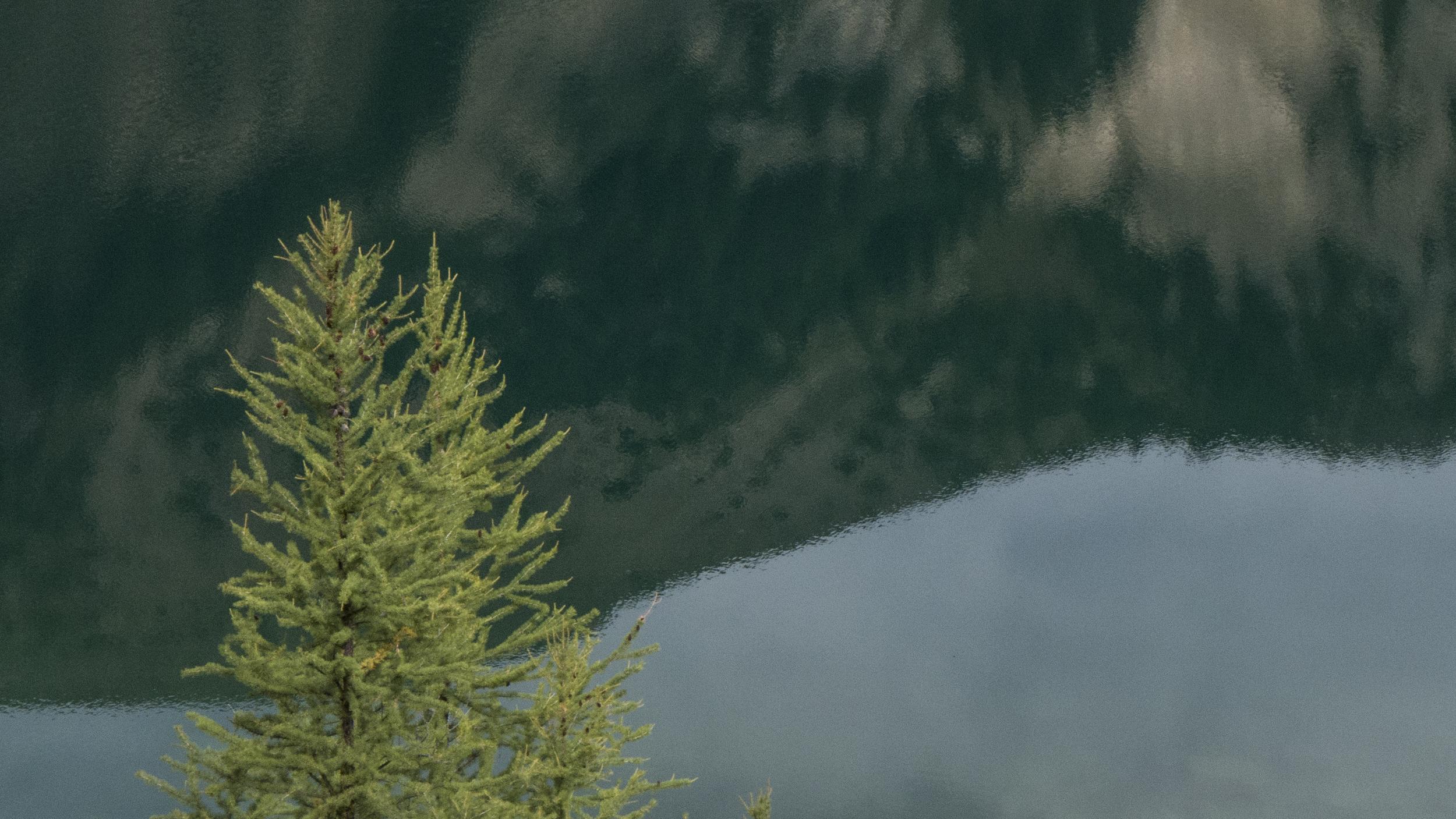 Canada-Rockies-1500px-P1000438.jpg
