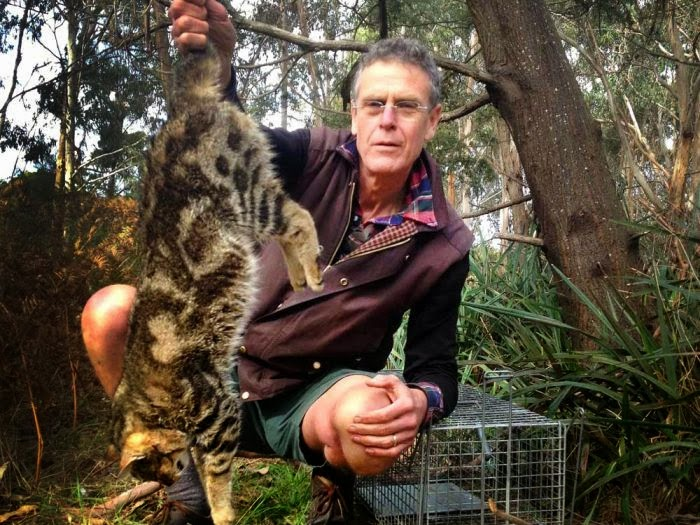 The second wave of extinction since European settlement is currently sweeping Australia's north. It's arrived in the Kimberley - Australia's last ark of pre european bio-diversity, Feral Cats...    http://www.abc.net.au/radionational/programs/backgroundbriefing/feral-cats-re-write-the-australian-story/5802204    Scientists now say the main threat to that biodiversity is the feral cat. Shocking story which demonstrates the terrible state of Australia's native wildlife, and overall shows not much is being done about it...