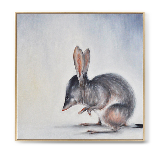 """Greater Bilby in Morning Light"" has been accepted for the 2015 Burrinja Gallery Climate Change Biennale  Acquisitive award Sunday 11th October Runtime 3rd October 2015 - January 31st 2016  www.burrinja.org.au"