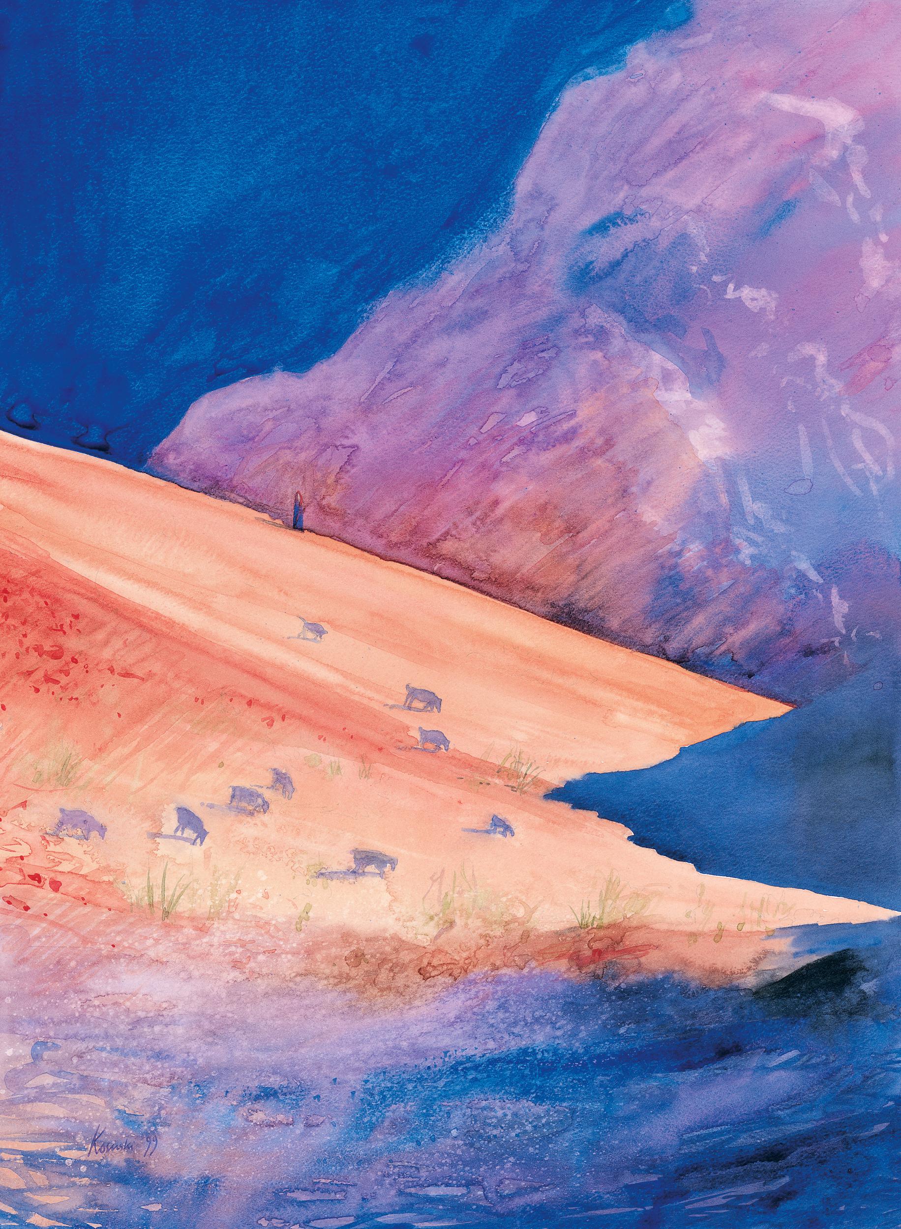 Shepherd, Wadi Rum