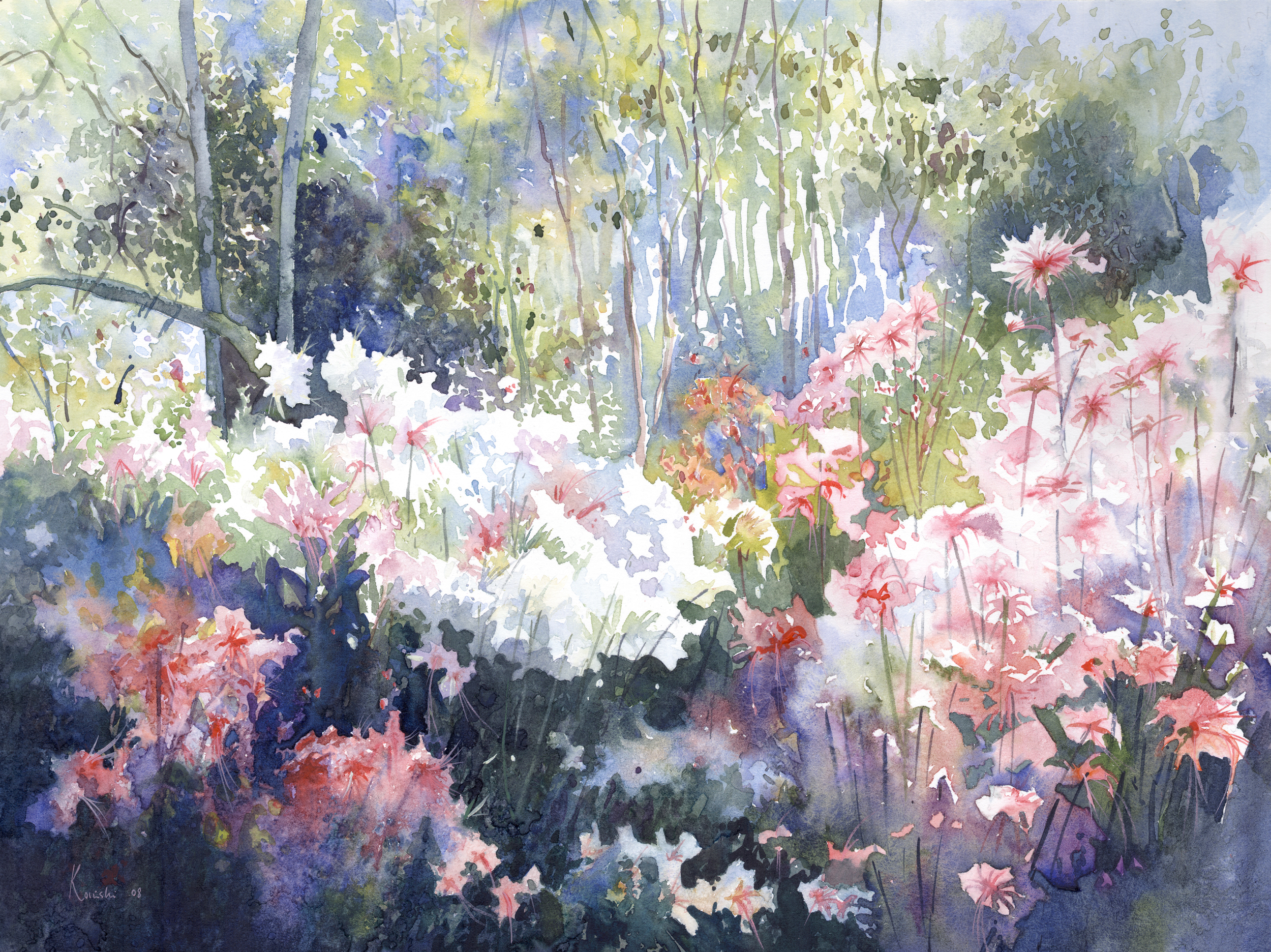 Azaleas, Brookgreen Gardens