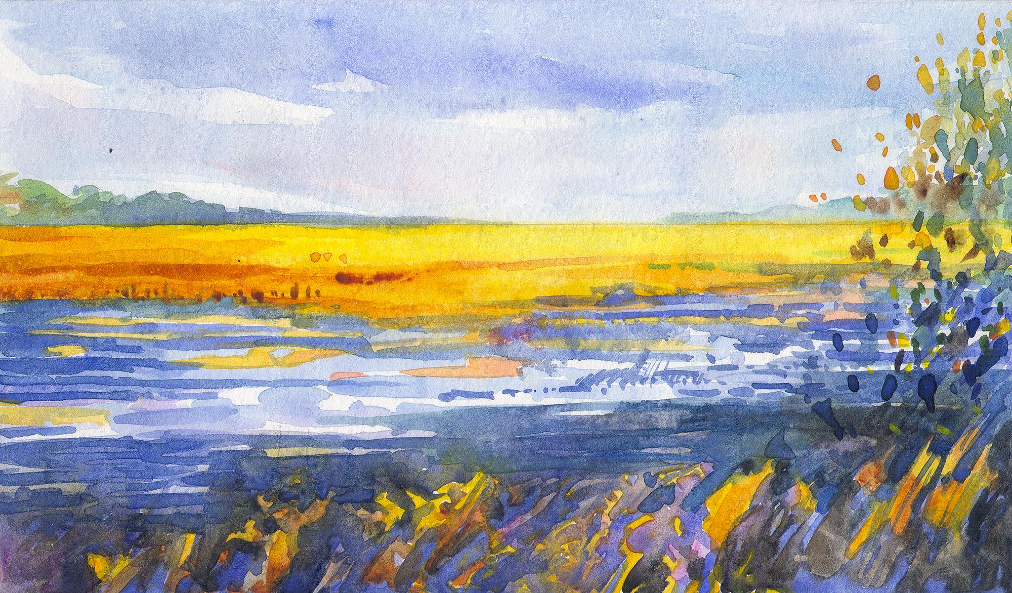 Salt Marshes, Hobcaw Barony, SC