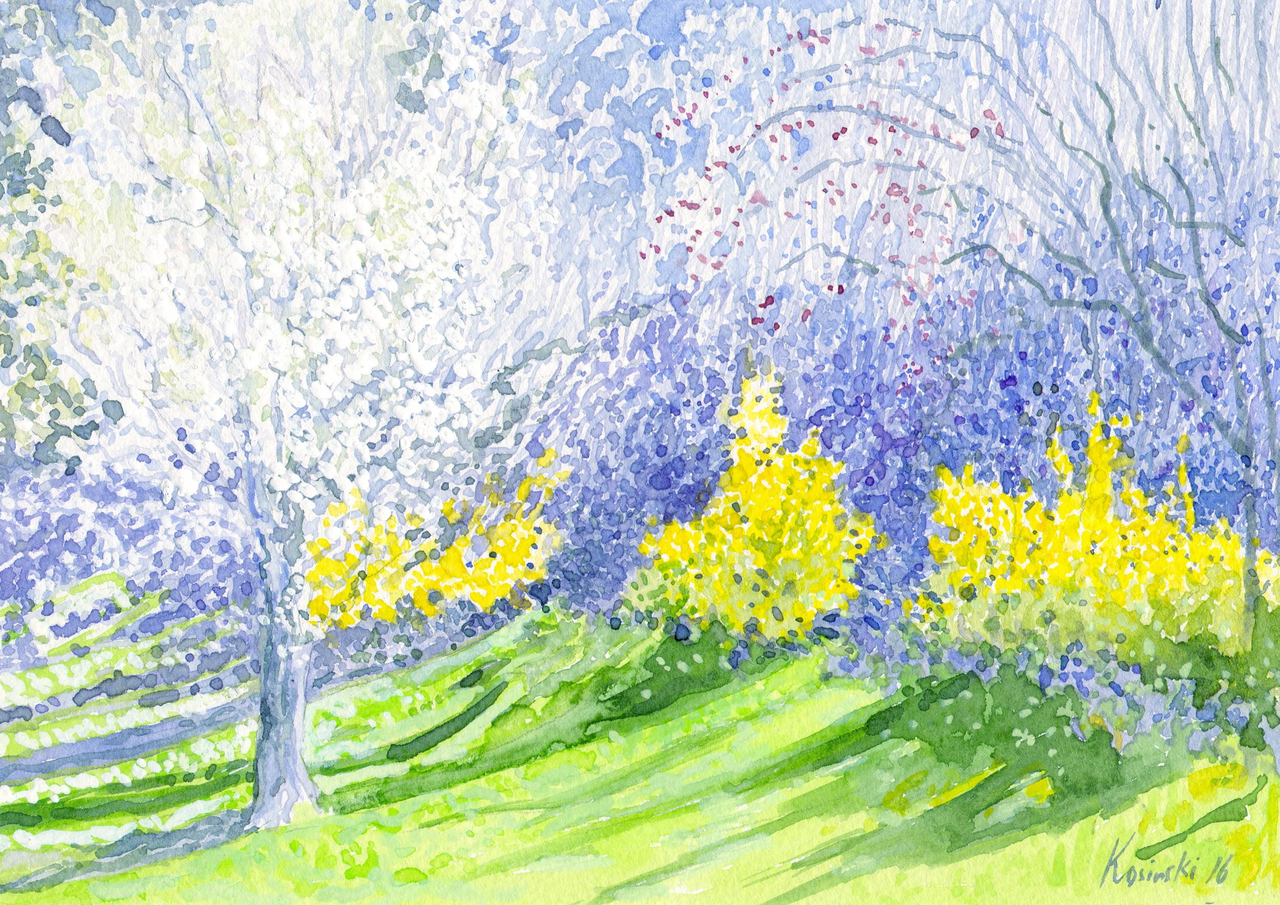 Spring Blossom, Ashe County