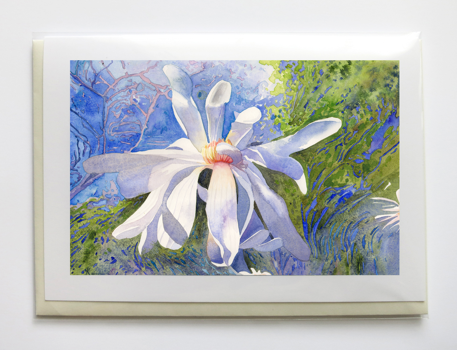 """flowers & Things - 5"""" x 7"""", signed, frame-able, gicleé greeting cards$6.95 each or $25 set of five"""
