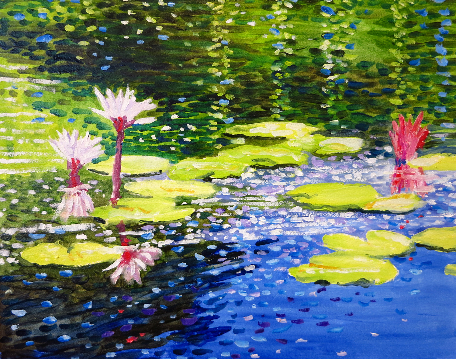 Waterlilies, Brookgreen Gardens, SC