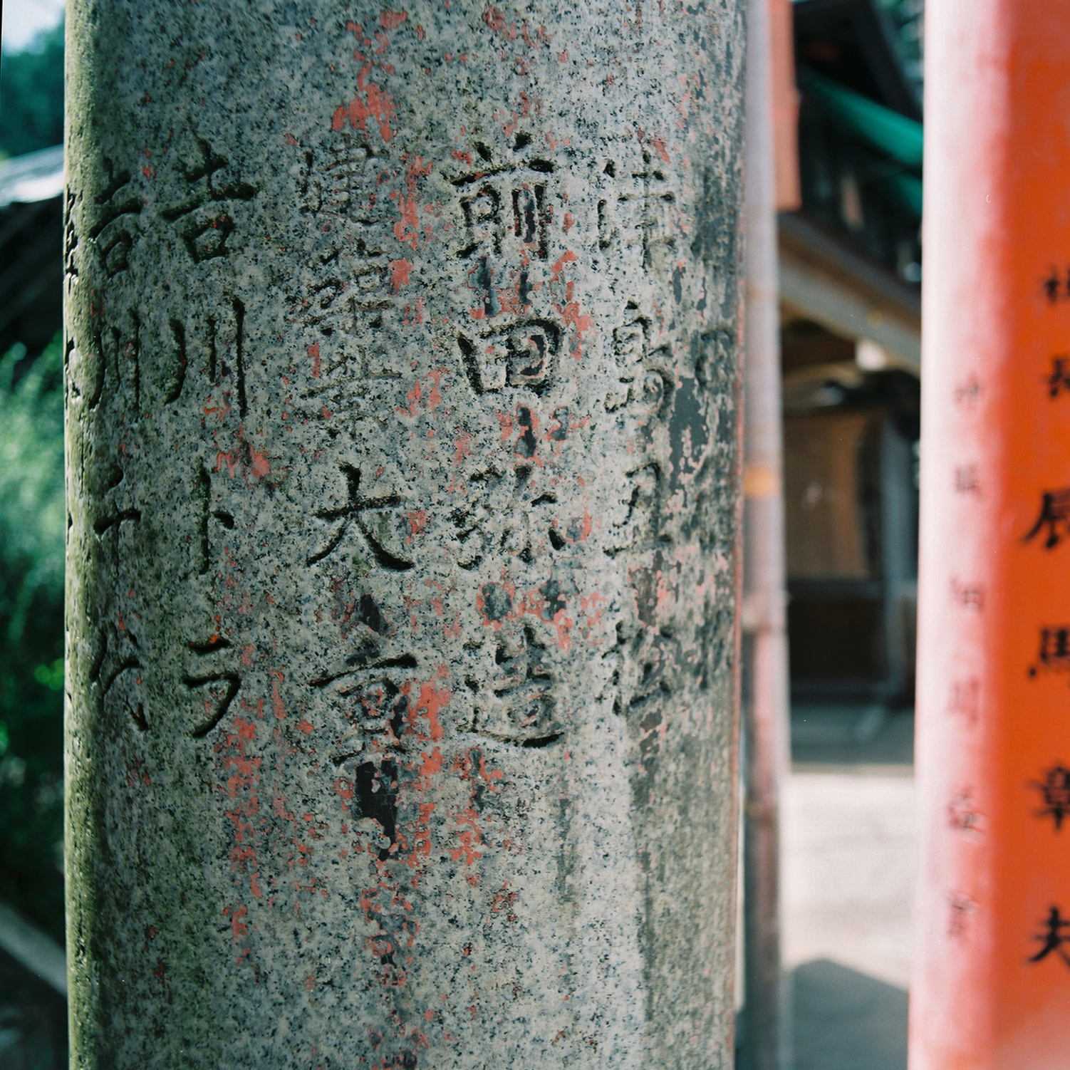 Torii, Fushimi Inari Taisha, Fushimi-ku, Kyoto, Japan, 2012