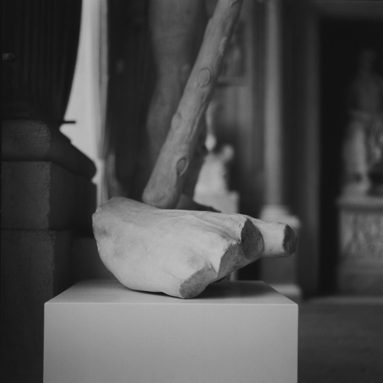 Galleria Borghese, Rome, 2015
