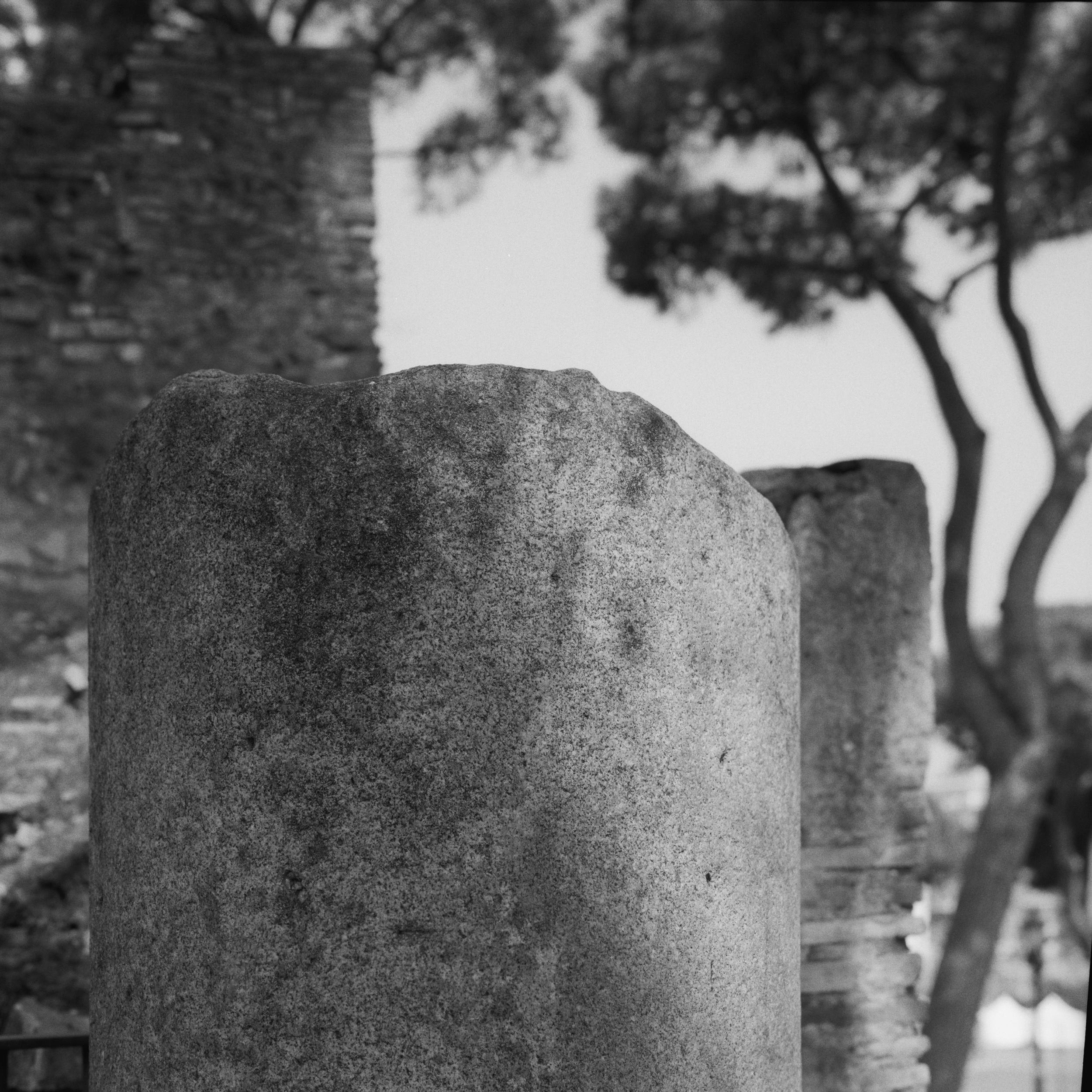 Via di S. Pietro in Carcere,Campidoglio, Rome, 2015