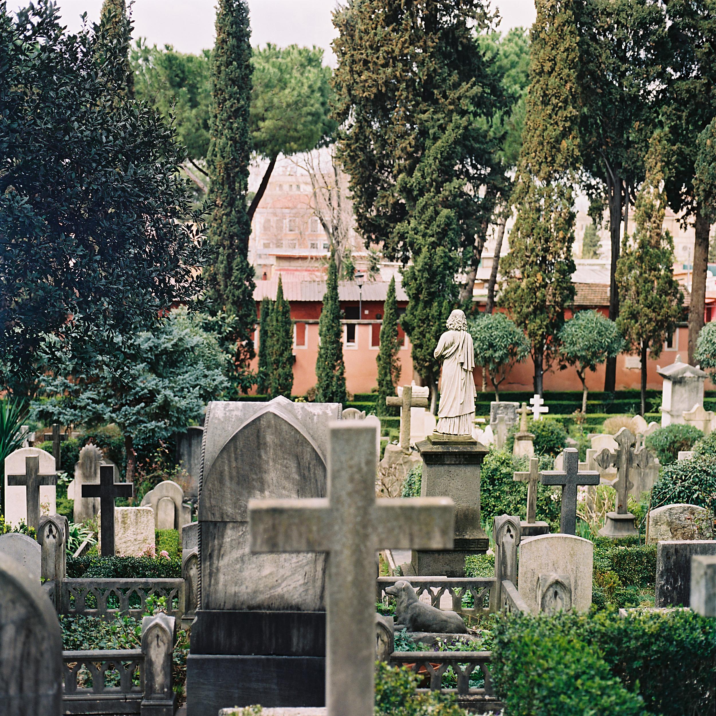 Cimitero Acattolico, Rome, 2015