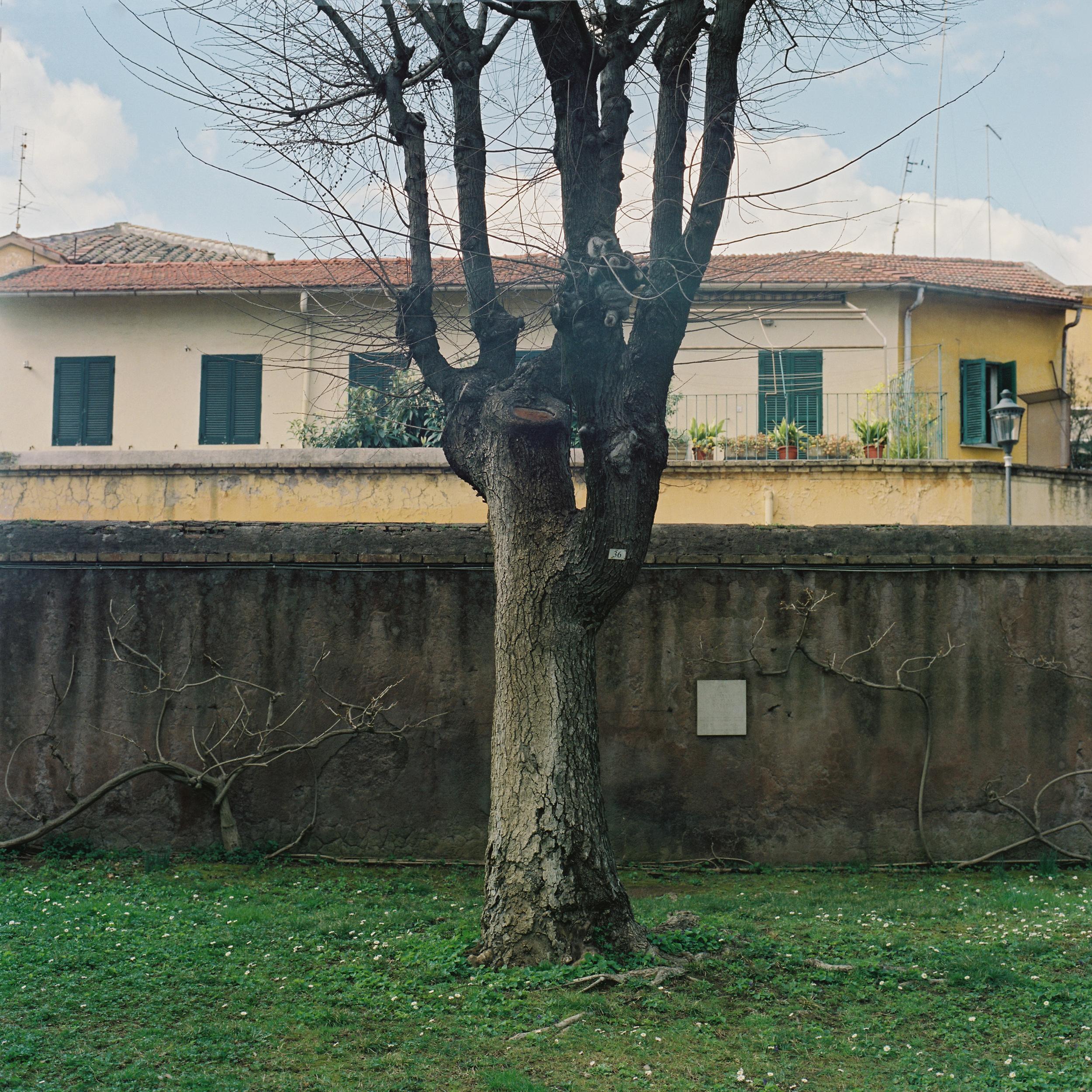 Cimitero Acattolico, Rome, 215