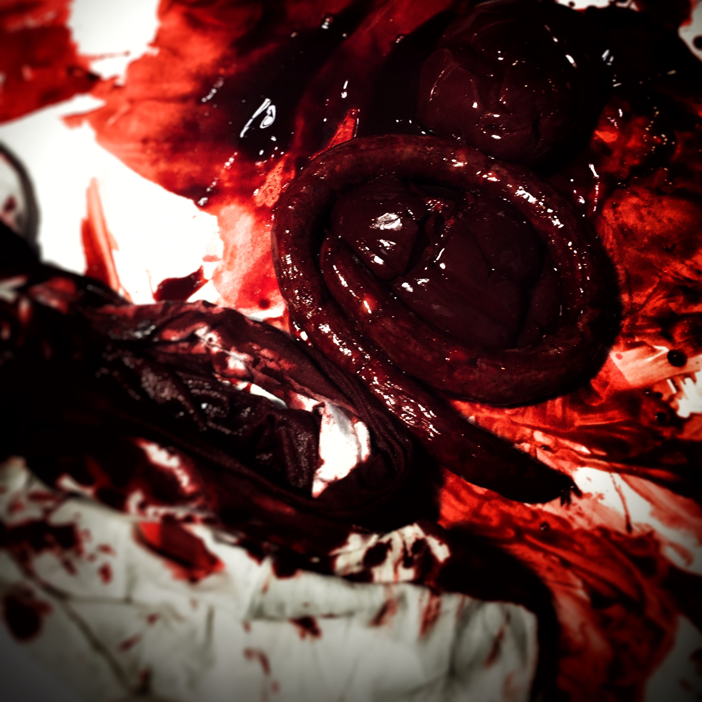 Some of the blood and gore being created and tested.