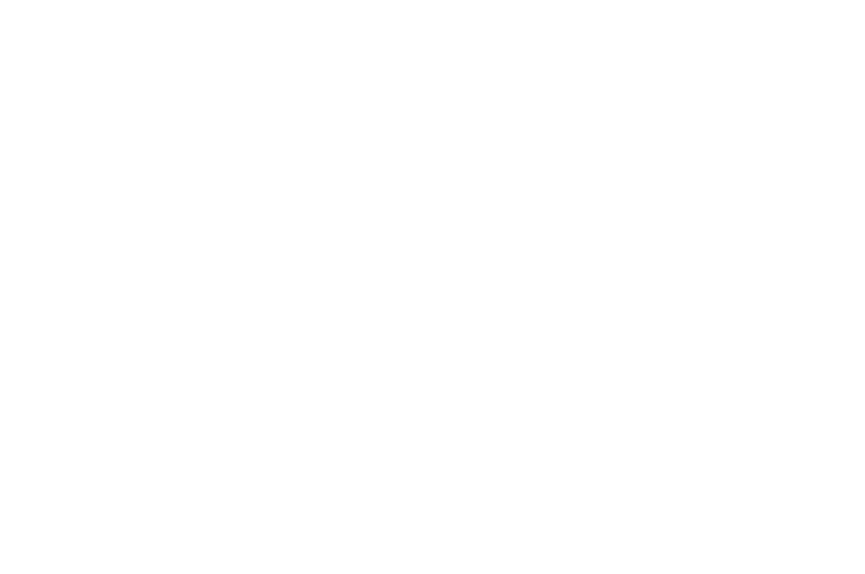 AWARD WINNING - BEST FILM - 2018-2.png