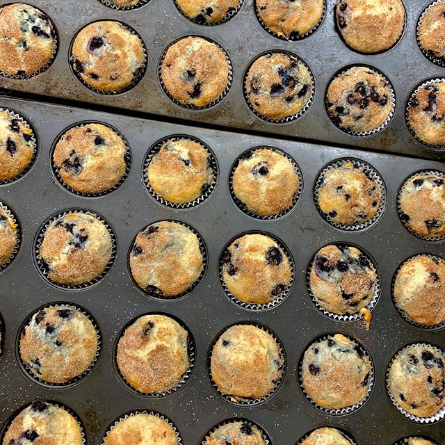 Blueberry muffins are a hallmark of the Maine experience... 'Cause they're the best! Like if your favorite muffin is blueberry and comment to tell us what your favorite kind of muffin if it isn't blueberry!