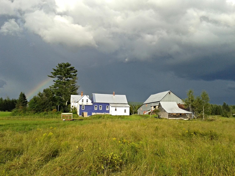 rainbowfarm_Home.jpg