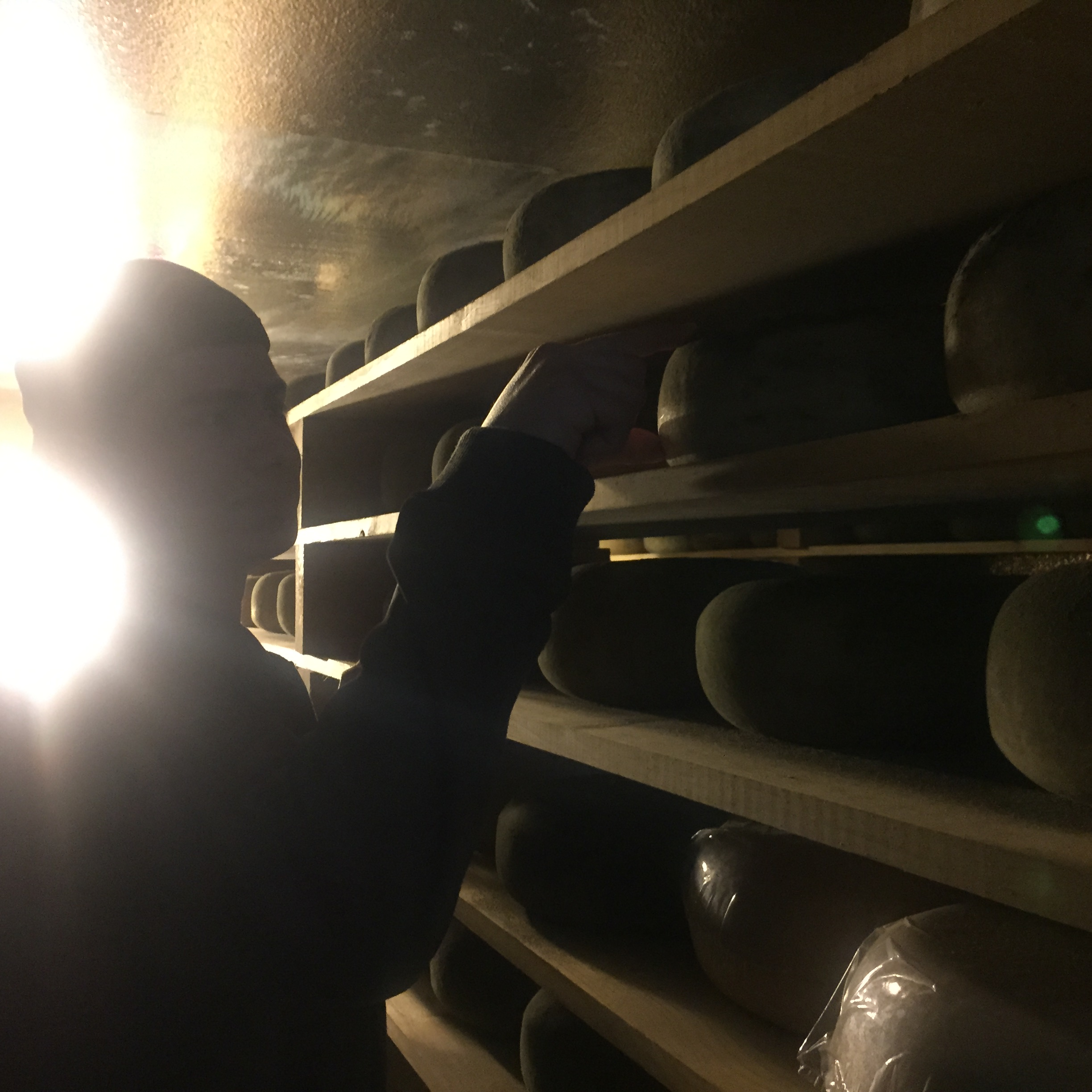 "The  the talented ""Cheese Maker"", Mario Daccarett Jr.  showing us what varieties are aging."