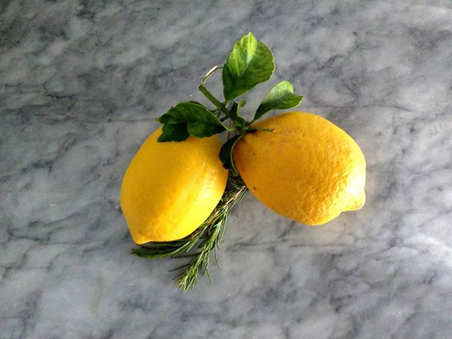 Lemon & Rosemary. What will you become together?  Got these lil guys from different colleagues at work😊  #lemon #rosemary #seasonal #simple #spring #summer #homegrown #madewithlove #supersourlemons #food #foodography #photo #fruit #herb #tart #savory #sweet