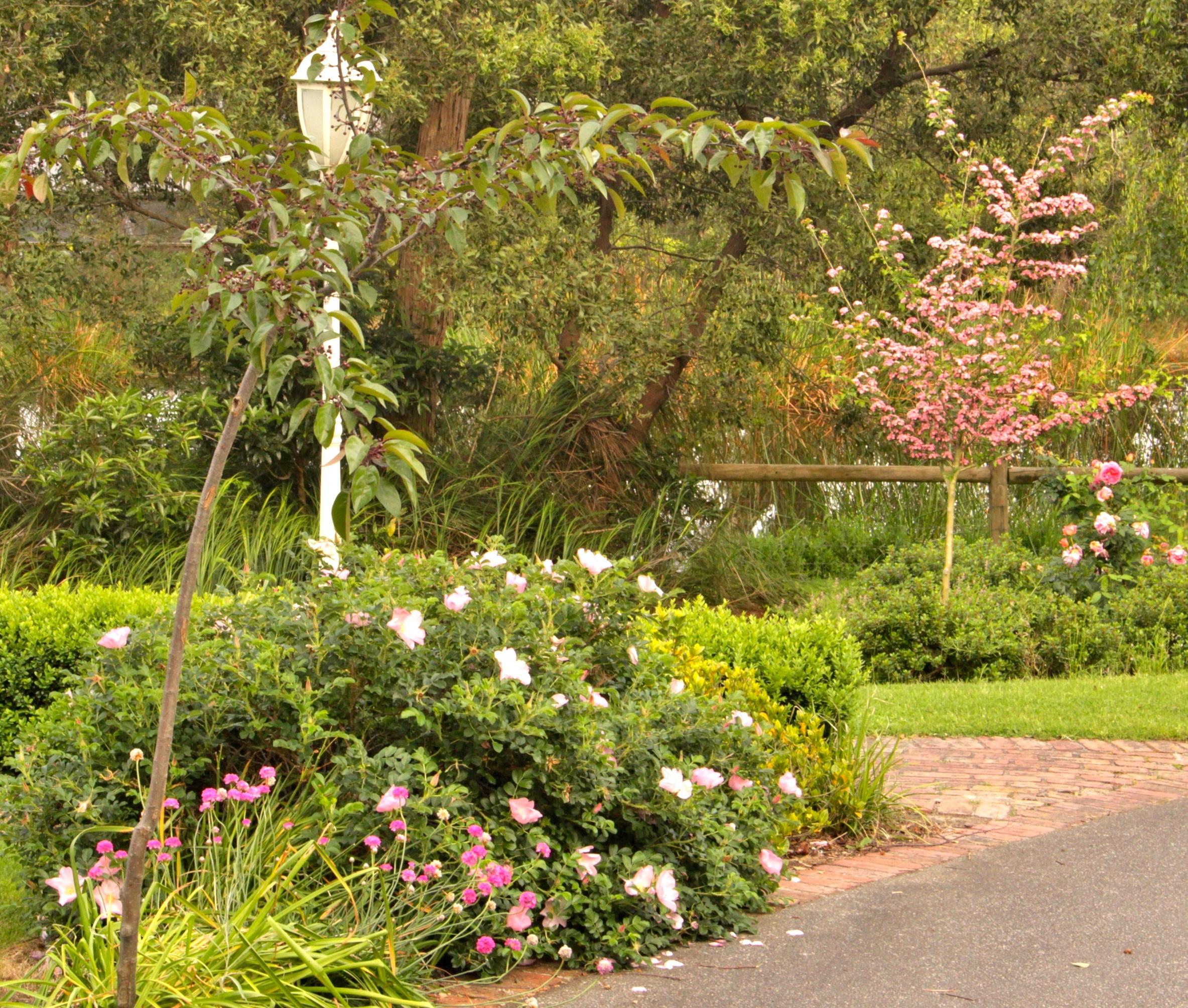 driveway gardens.JPG