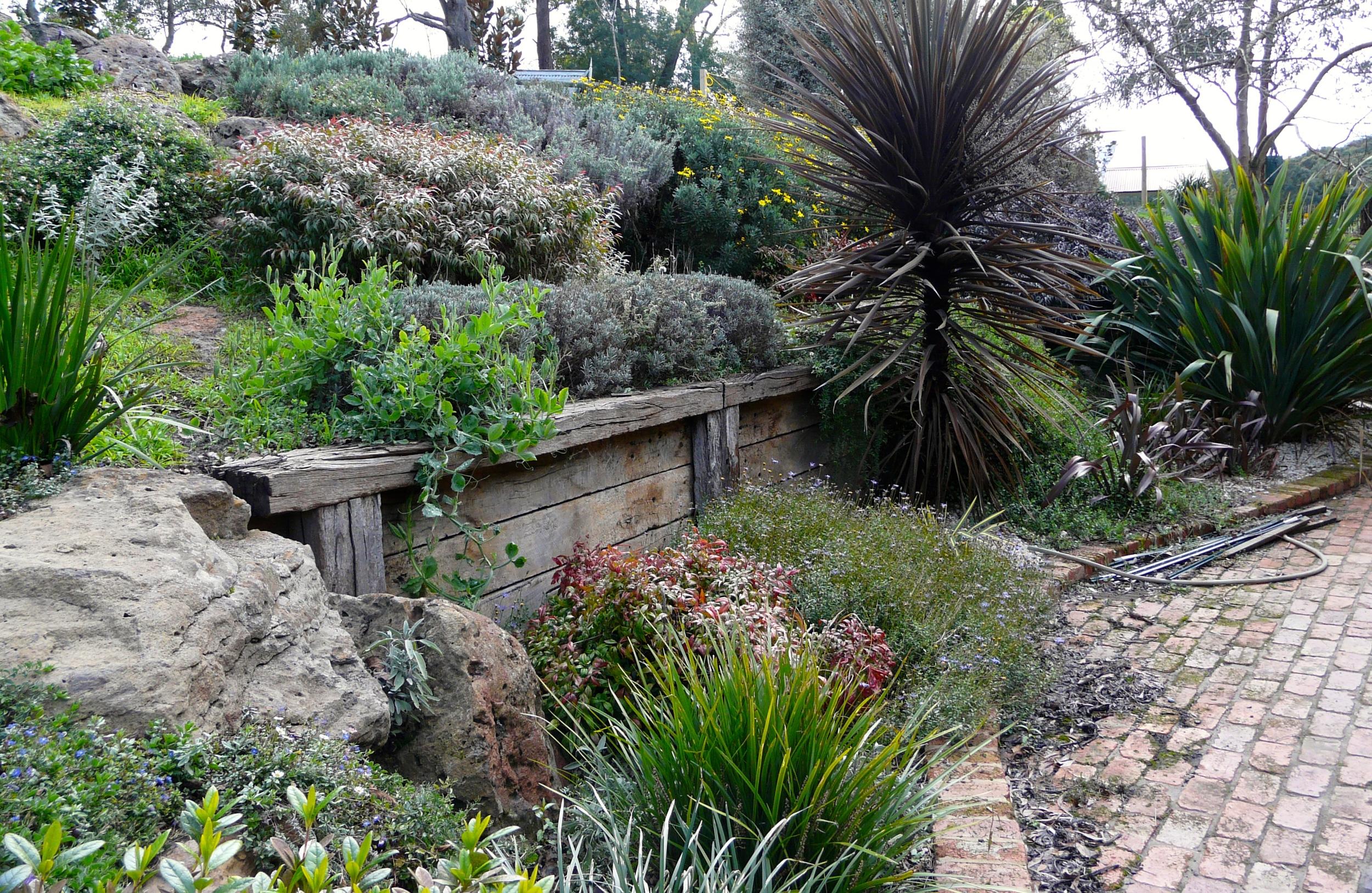 garden bank 2.JPG