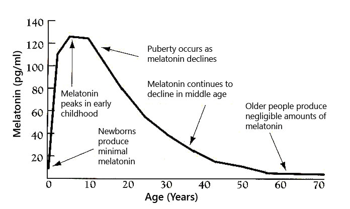 Melatonin Production Decline with Age