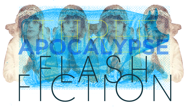 flash-fiction-2.png